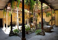 Otra cosa que me gusta: los patios internos, umbrosos en verano, calidos en las siestas de invierno.