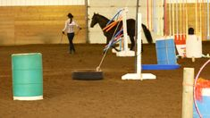 in hand trail - CHARMD show Canadian Horse, Black Canadians, Horses For Sale, Ranch, Trail, Guest Ranch