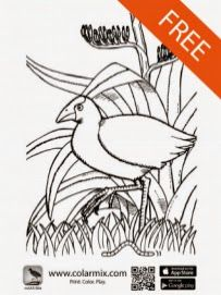 Quiver coloring and 3d on pinterest for Colar mix coloring pages