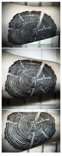 all the trees of the field: Gorgeous black tattoo of a cross section of a tree showing all the rings and cuts. Super detailed unique Nature Tattoo