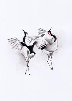 Mariko: Japanese cranes mating ritual