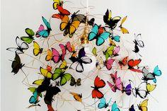 A la luz de las mariposas  - ESPACIO LIVING