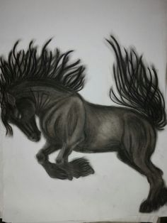 Charcoal illustration of a horse