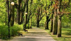 Poznan Poland, Park Sołacki [fot. Radosław Maciejewski]