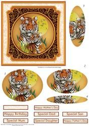 Eye of the Tiger Card Topper & Pupil Shaped Pyramage