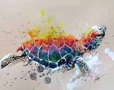 What: Turtle 2 watercolour with gouache original Who: Tilen Ti. Why: The landscape painting of the creature with the use of primary colours makes the piece more vibrant and animated, which makes the audience feel more energetic and refreshed. Watercolor Paintings Of Animals, Animal Paintings, Original Paintings, Watercolor Illustration, Watercolor Art, Art Amour, Ouvrages D'art, Love Art, Painting Inspiration