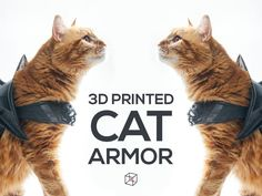 CAT ARMOR by PrintThatThing - Thingiverse