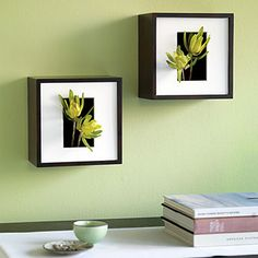 From sunset.com...  these Shadowbox Wall Vases are such a cute idea.
