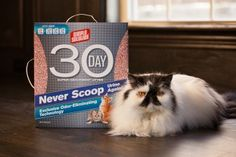 Review and Giveaway: Simple Solution 30-Day Litter - The Conscious Cat - Enter to win a one month supply of Simple Solution 30-Day Litter - three winners!