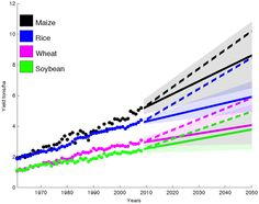 This terrifying chart shows we're not growing enough food to feed the world. Peer reviewed study says crop yields are not improving at a rate that will support a much larger population by 2015.