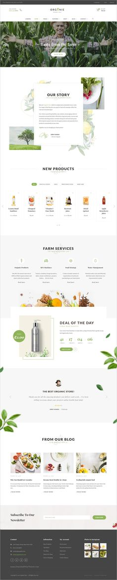 Organie is a wonderful responsive 12in1 #WooCommerce #WordPress theme for #organic store, #farm, cake and flower shop eCommerce website download now➩ https://themeforest.net/item/organie-an-organic-store-farm-cake-flower-shop-woocommerce-theme/18777939?ref=Datasata