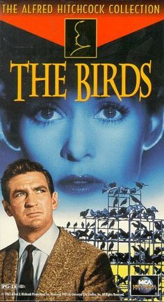 The Birds (1963) - Pictures, Photos & Images - IMDb