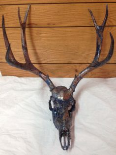 This beautiful deer skull is very unique. It was dipped in swirled paint giving it a one of a kind look. Dipped in copper, black and blues and swirled just enough to make it a lovely piece of art. Can be hung inside or out.