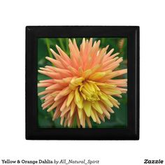 Keep Your Things Safe in this Yellow & Orange Dahlia Keepsake Box! See it on more products @ https://www.zazzle.com/z/ym5f3?rf=238562247198752459 #Home #Bedroom #Keepsake #Box #Flowers #Photo #FineArt