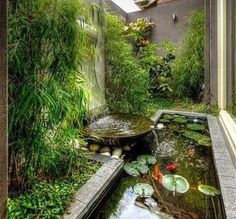 A lot of people are fond of outdoor activities. For that reason, it gives way to the popularity of patio, decks, gardening and so on. Recently, houses. Vsco, Vegetable Garden Design, Layout, Backyard Landscaping, Patio Decks, Backyard Ponds, Landscaping Ideas, Architecture, Garden Furniture