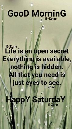 Good Morning Saturday, Good Morning Wishes, Happy Saturday, Open Secrets, Affirmations, Mornings, Ds, Life, Image