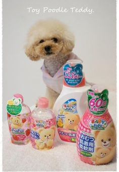 ふわふわ☆ ワンさん☆ http://www.fafa-online.jp/shop/shopbrand.html