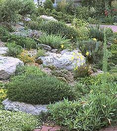 Rock Garden Strategies for Waterwise Gardens, Rebecca Lance, Western Horticultural Society