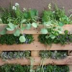 Из деревяных поддонов со склада можно сделать отличную вертикальную стенку-озеленение )