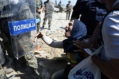 Desperate: A mother falls to her knees and begs police officers to allow her to enter Macedonia from northern Greece yesterday