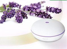 Essential Oil Diffuser By Smiley Daisy® - Whisper-Quiet Cool Mist Humidifier - Enjoy Aromatherapy Experience with Your Favorite Scented Essential Oils - Free eReport Download - Ultrasonic Vaporizer with Excellent Mist Disperse Rate - Enlightening 7 Color Changing LED Lamp - Best Candle Burner Replacement - Oval-Shaped Oil Diffuser with Elegant Finish Housing - 180-Day Product Replacement Warranty When You Purchase with Smiley Daisy (Creamy White) Smiley Daisy ...