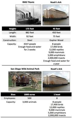 Noah's Ark. I mean, come on. Really?