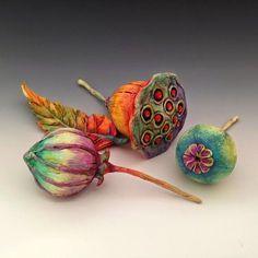 Doreen Kassel's Uncommon Creatures: New Pods, Plants & Color Group