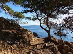 Costa Brava Full-Day Hike from Barcelona Hiking Tours, Go Hiking, Hiking Gear, Sea Walk, Enjoy The Silence, Barcelona Hotels, Crashing Waves, Like A Local, Fishing Villages