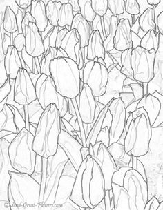 Red And Yellow Tulips Coloring Page