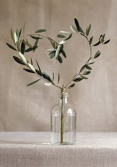 Olive branch heart-shaped in a bottle