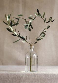 Olive branch heart-shaped in a bottle