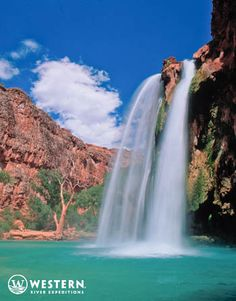 Amazing waterfalls and blue pools of the Grand Canyon #vacation #adventure #rafting