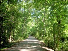 Biking the North Augusta Greenway