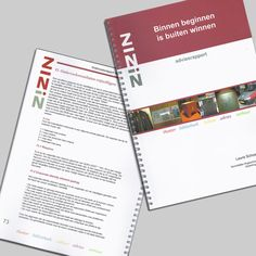 Advice report for ZINiN made during my internship