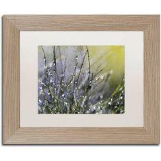 Trademark Fine Art Spring Morning Canvas Art by Beata Czyzowska Young, White Matte, Birch Frame, Size: 16 x 20, Brown