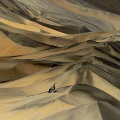 SERGEY GORSHKOV - Namibia desert