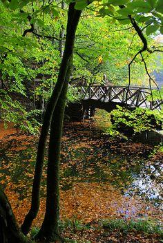 Seven Lakes, Bolu, Turkey
