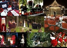 Nashville Event Planning: Twilight/ True Blood Inspired Wedding.....