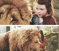 Lion and Lucy