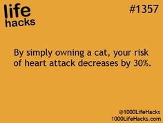 I don't know if I should believe this, but I do have two cats!