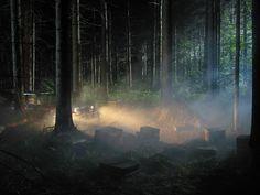 Man in the Woods # 5 von Gregory Crewdson