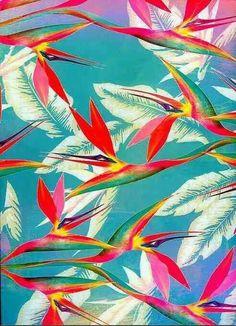 Tropical floral print: Bird of paradise Motifs Organiques, Motifs Textiles, Textile Patterns, Print Patterns, Art And Illustration, Pattern Illustration, Motif Tropical, Tropical Pattern, Tropical Prints