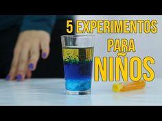 BLOG DEL DEPARTAMENTO DE CIENCIAS Y TECNOLOGÍA : EXPERIMENTOS CASEROS MUY SENCILLOS Y DIVERTIDOS