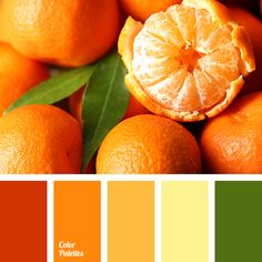 bright orange color, bright yellow color, color matching in interior, color of orange, color of tangerines, dark green color, dark yellow and red colors, green and orange colors