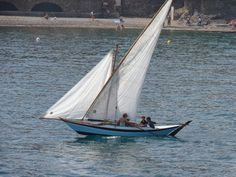 """Trophee Voiles Latines Collioure 2014 -  Modern sail and oar  latin-rigged boat """"Fugirem"""", Marseillaise class, overall winner ."""
