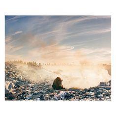 Karhu roskien keskellä - kuva pysäyttää