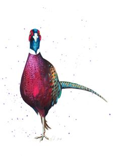 Buy beautiful contemporary art and gifts for that country living style from our web store, originals painting, prints and gift cards Watercolor Paintings, Original Paintings, Woodland Theme, Art For Art Sake, Beautiful Birds, Beautiful Images, Linocut Prints, Fabric Painting, Bird Art