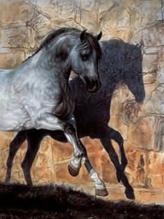 """Dancing with His Shadow"" Arabian horse by Lesley Harrison"