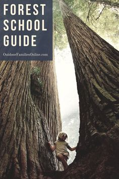The concept of forest schools has been around for some time, but many parents are just now finding out how an all-outdoor education may help their child. Use our Forest School resource guide to choose the perfect outdoor education for your kids.