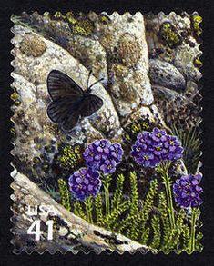 US Stamp 2007 - Alpine Tundra 41c Magdalena Alpine Butterfly